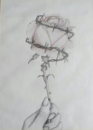 barbed wire rose